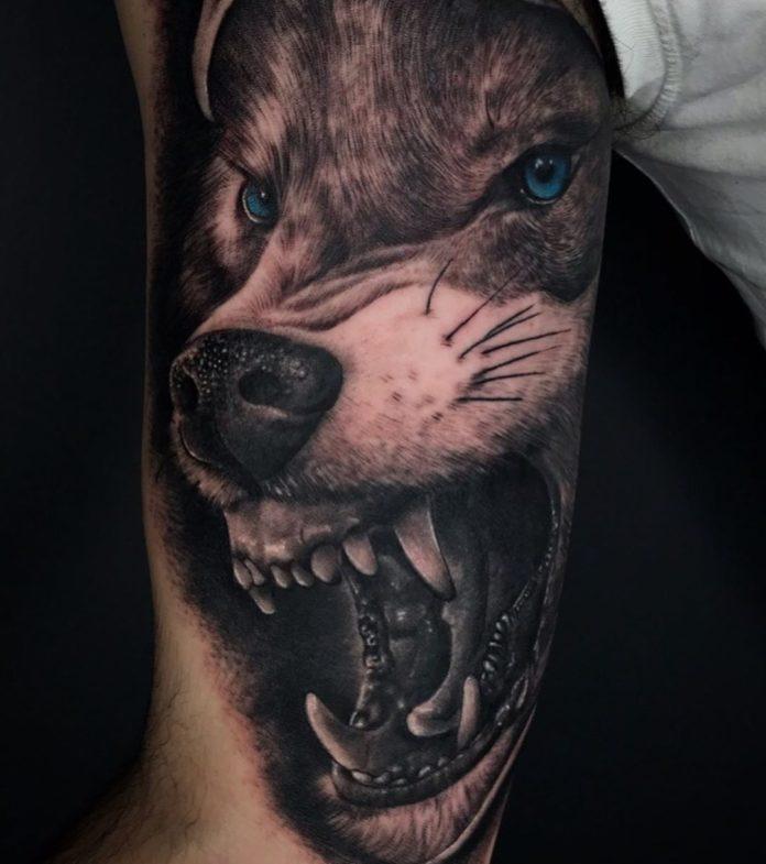Tatoo gros plan de tête de Loup rugissant sur avant bras