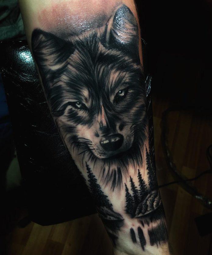 Tatouage de tête de Loup + forêt de sapin sur avant bras