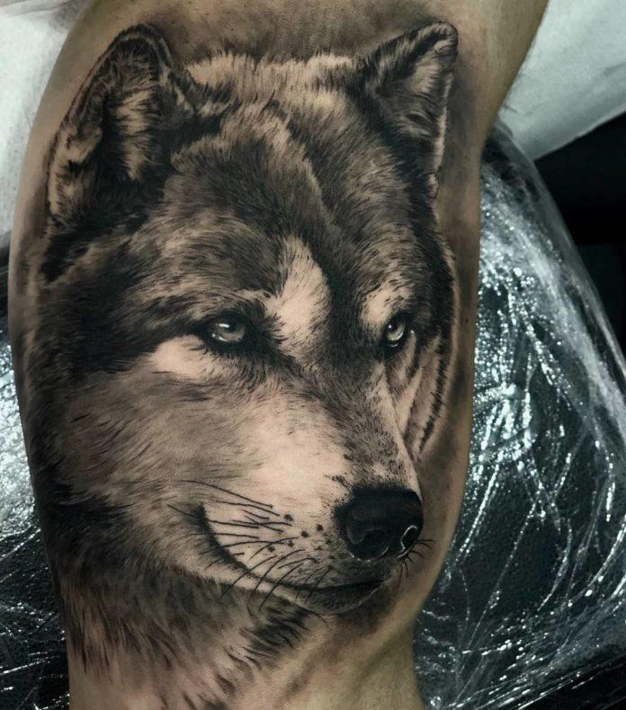 Tatouage réaliste de tête de Loup sur le genou